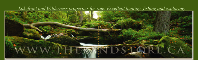 properties for sale in northern ontario